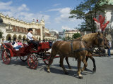 Horse and Carriages in Main Market Square  Old Town District  Krakow  Poland