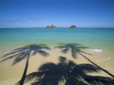 Lanikai Beach  Oahu  Hawaii  Hawaiian Islands  USA