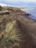 Cavendish Coast  Prince Edward Island  Canada