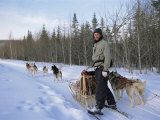 Dog Sledding with Aventure Inukshuk  Quebec  Canada