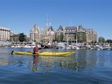 Kayaking in the Harbor  Victoria  British Columbia  Canada