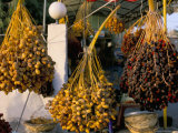 Dates for Sale  Palmyra  Syria  Middle East