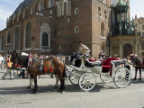 Horse and Carriage in Main Market Square  Old Town District  Krakow  Poland