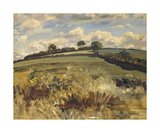 Withypool Landscape  Exmoor