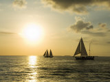 Sailboats at Sunset  Key West  Florida  USA
