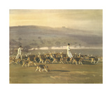 Belvoir Hounds Exercising In The Park