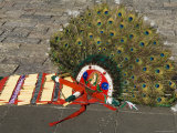 Head Dresses Worn by Dancers in the Square at the Basilica De Guadalupe  Mexico City  Mexico