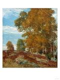 Autumn Hilltop  New England  1906