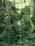 600 Metre Zip Line at the Top of the Sky Tram at Arenal Volcano  Costa Rica  Central America