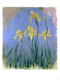 Yellow Irises  Circa 1918-1925