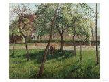 The Enclosure at Eragny  Un Clos a Eragny  1895