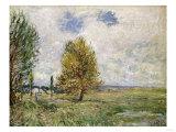 La Plaine De Veneux-Nadon  1881