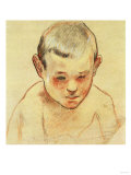 Head of a Boy  1886-1888