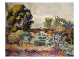 Eucalyptus and Olive Grove  1907