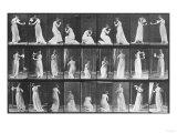 Human Locomotion: Females  1887