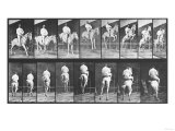 Selected Motion Studies  1887