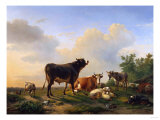 A Bull  a Cow  a Donkey  a Goat  a Dog  Sheep and Poultry in an Extensive Landscape  1849