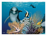 Coral Garden  Hawaiian Dolphin
