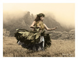 Swaying Skirt  Hawaiian Hula Dancer