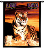 Louisiana State University (LSU) Tigers