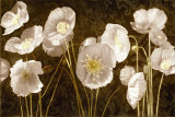 Baroque Poppies