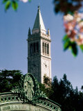 University of California  the Campanile  Alamada County  Berkeley  California
