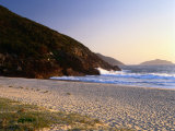 Early Morning at Box Beach  Tomaree National Park  Port Stephens  New South Wales  Australia