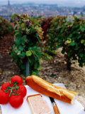 Tomatoes  Pate and Baguette Picnic in Vineyard  Epernay  Champagne-Ardenne  France