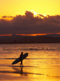 Person with Surfboard Walking along Beach at Sunset  Gold Coast  Queensland  Australia