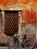 Bicycle Against Wall at Trastavere  Rome  Lazio  Italy