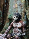 Indigenous Australian Dancer with Body Paint  Mossman Gorge  Queensland  Australia