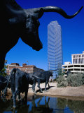 Cattle-Drive Sculptures at Pioneer Plaza  Dallas  Texas