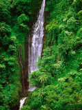 Tiavi Falls  Upolu  Samoa