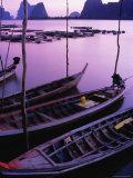 Longtail Boats Bob against Mooring Sticks at Sunset  Ko Panyi  Phang-Nga  Thailand