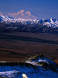 Mount Mckinley with Dall Sheep in Foreground  Denali National Park and Preserve  Alaska