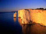 Pinnacles at Handfast Point  Studland  Dorset  England
