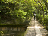 Man Walking the Path of Philosophy  Kyoto  Kinki  Japan