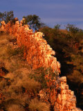China Wall  Halls Creek  Kimberley  Western Australia