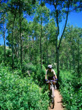 Ranger on Mountain Bike  Steamboat Springs  Colorado