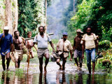 Travelling Magistrates Wading through Stream  Oriomo Plateau  Western  Papua New Guinea