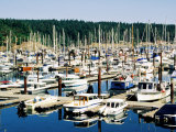 Friday Harbour in Puget Sound  San Juan Island  Washington