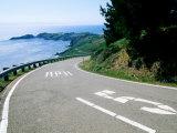 Point Bonita from Marin Headlands Road  Marin County  California