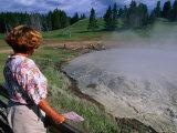 Mud Volcano  Churning Cauldron in the Yellowstone National Park  Yellowstone National Park  Wyoming