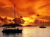 Moored Yachts at Sunset  Tortola  Virgin Islands