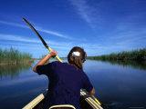 Canoeing the Okavango River  Okavango Delta  Ngamiland  Botswana