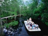 Boat Ride through the Swamp  Okefenokee Swamp Park  Georgia