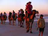 Camel Rides on Beach  Broome  Western Australia