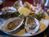 Plate Full of Oysters  Quay Cottage Seafood Restaurant  Westport  Ireland