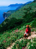 Hiker on Trail Above Corniglia  Cinque Terre  Liguria  Italy