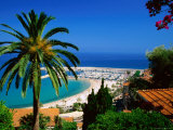 Beach and Town from Hill with Palm Tree in Foreground  Menton  Provence-Alpes-Cote d'Azur  France